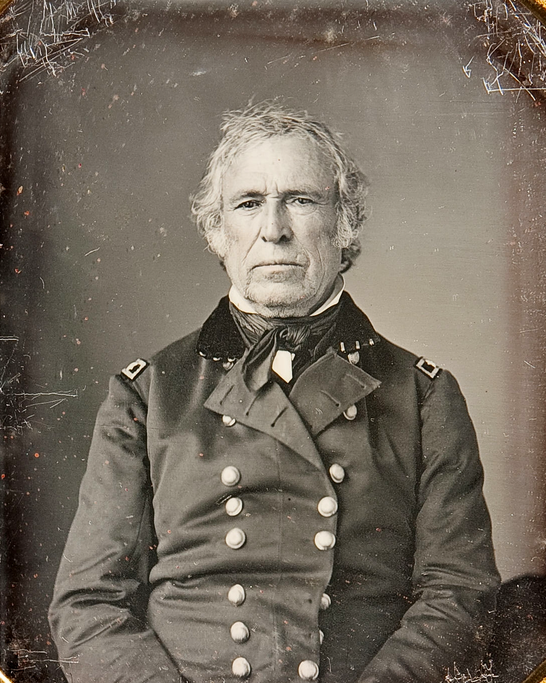 Zachary Taylor  the 12th President of the United StatesZachary Taylor President