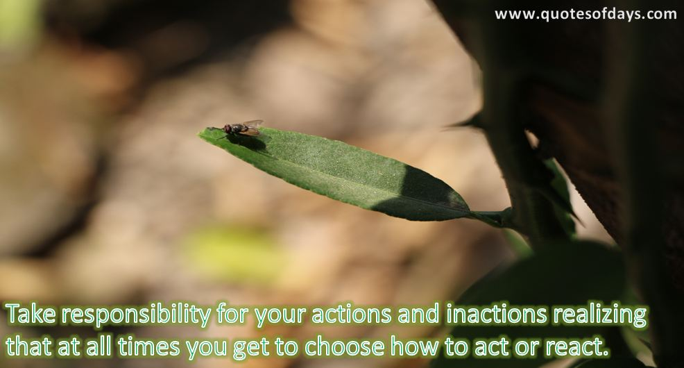 Take responsibility for your actions and inactions realizing that at all times you get to choose how to act or react.