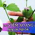 Bài Thuốc Nam - Chữa viêm xoang từ cây ngũ sắc