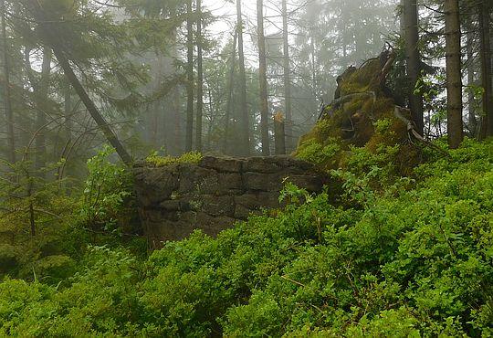 Formy skałkowe przy szlaku.