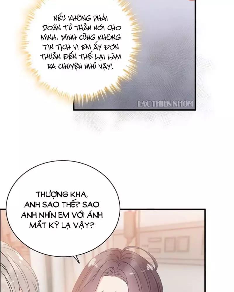 Cô Vợ Hợp Đồng Bỏ Trốn Của Tổng Giám Đốc chap 221 - Trang 13