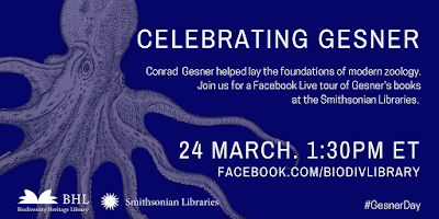 Celebrating Gesner