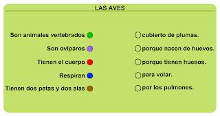 http://primerodecarlos.com/SEGUNDO_PRIMARIA/Anaya/datos/03_cmedio/03_Recursos/actividades/03/animales3.swf