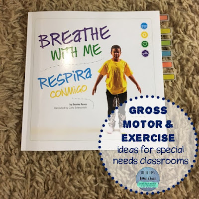 Gross Motor & Exercise in Special Education