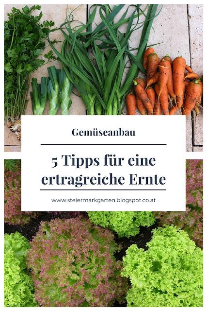 Gemüseanbau-Tipps-für-eine-ertragreiche-Ernte-Pin-Steiermarkgarten