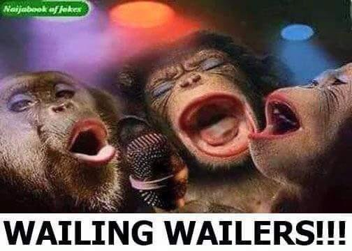 Image result for nigeria wailers