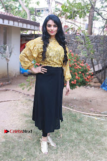South Indian Actress Shweta Menon Stills at Inayathalam Audio Launch Stills  0019.jpg