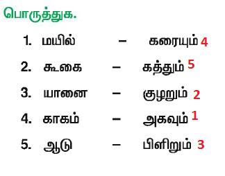 Tnpsc Tamil Notes: மரபுச் சொற்கள் , பிற மொழிச் சொற்கள் , தளை