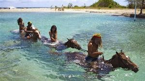 Best Time To Visit Jamaica Horseback Riding