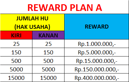 point reward plan A MSI