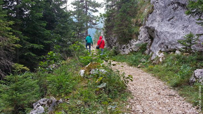 Прогулочная тропа вдоль Черного озера, Черногория