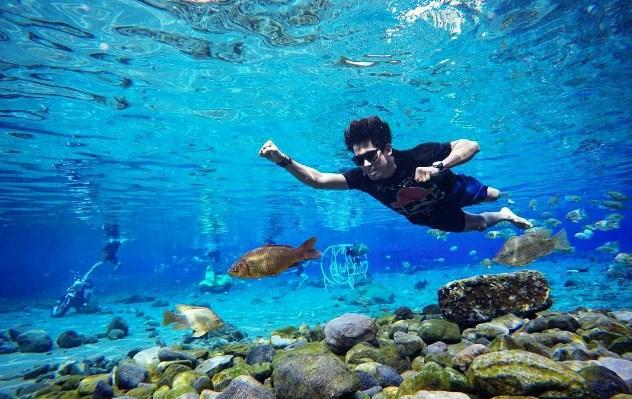 Wisata Umbul Ponggok Klaten Tempat Untuk Snorkeling Serta Diving Di Air Tawar