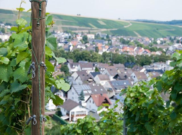 Ahrsteig, Bad Neuenahr