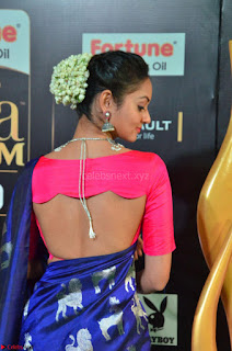 Shanvi Looks Super Cute in Pink Backless Choli Blue Saree at IIFA Utsavam Awards 2017 10.JPG