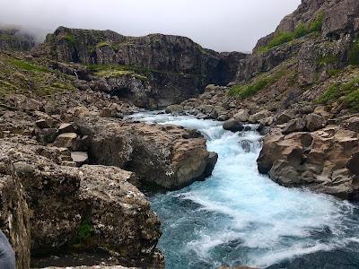 Icelandic Char