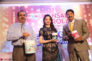 Tamannaah Bhatia at Launch of Kansai Nerolac new products Pics 033.jpg