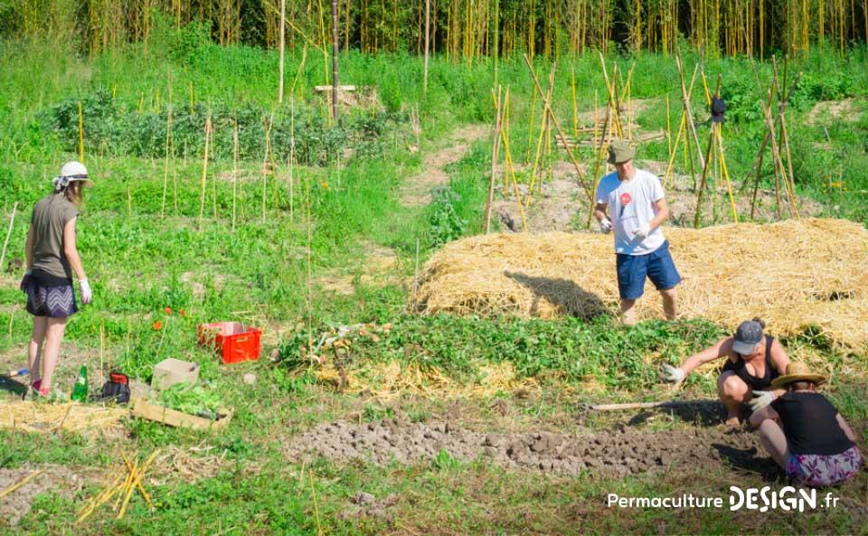 Atelier pour un d veloppement durable dans le denaisis for Jardin foret