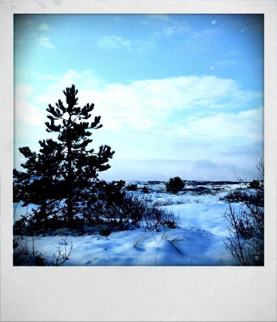 Caatje's Artsy Stuff: Snow Island
