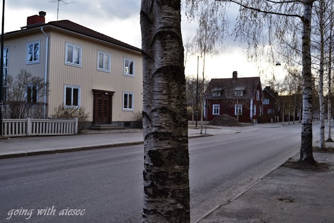 Kierunek: Umeå