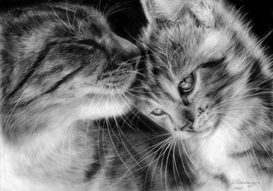 01-Mother-Cat-and-her-Kitten-Danguole-Serstinskaja-Paintings-of-Cats-that-look-like-Photographs