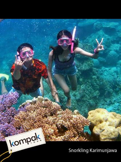 Travel Tour Paket Wisata Karimunjawa Murah Tahun Ini Khusus Mahasiswa
