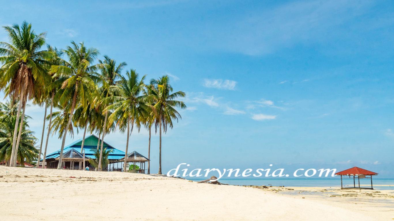 how to get to derawan archipelago, best time to visit derawan, guide to derawan island, diarynesia