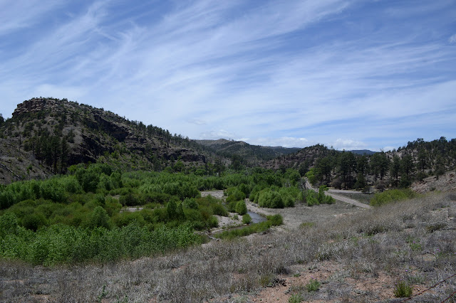 west fork Gila River