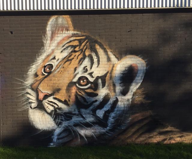 Graffiti Artist Leeuw