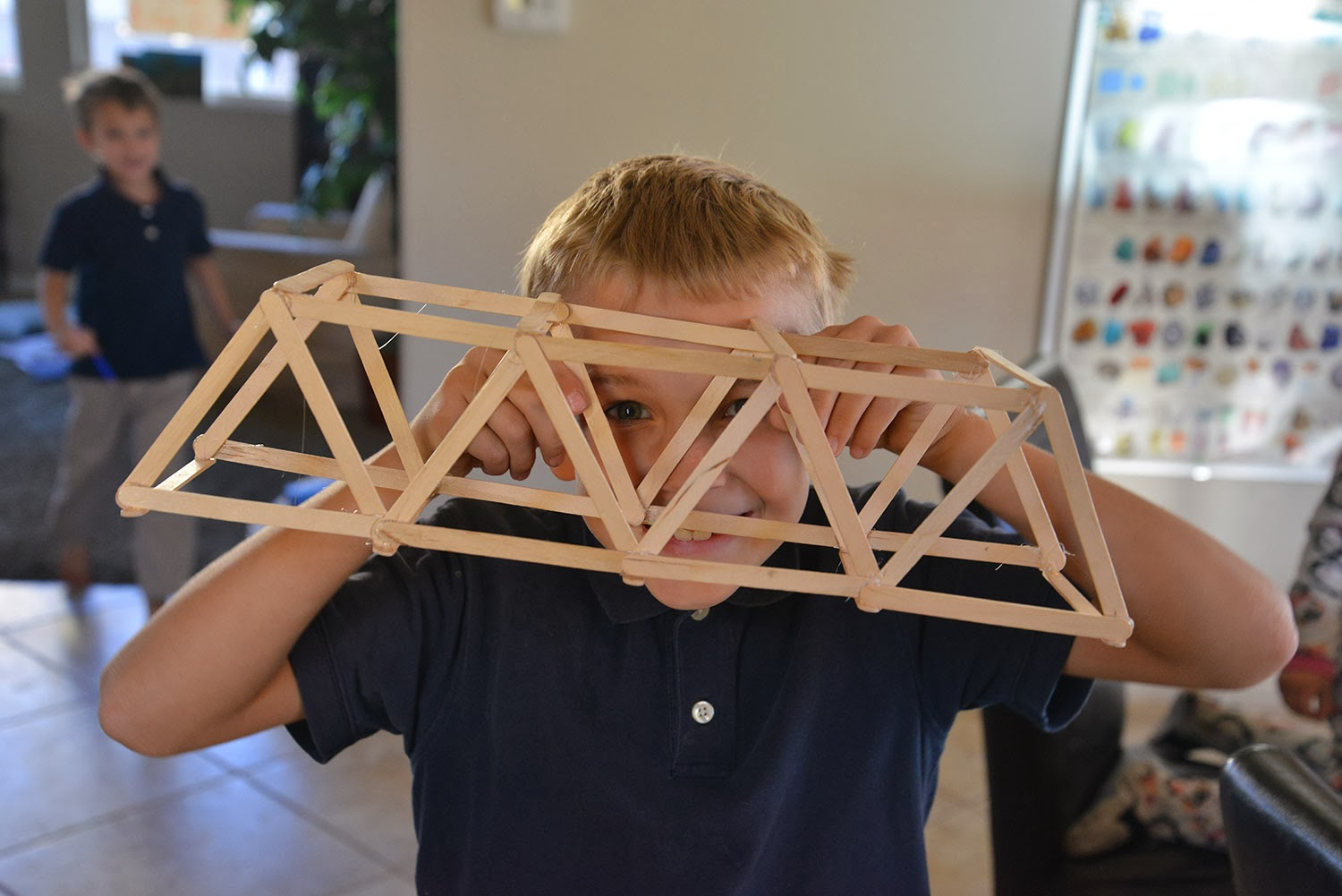 A School Of Fish Bridge Resources And Building A Truss Bridge