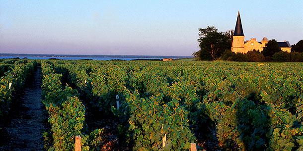 Região de vinhos Medoc