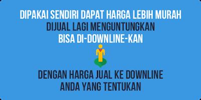 downline pulsa