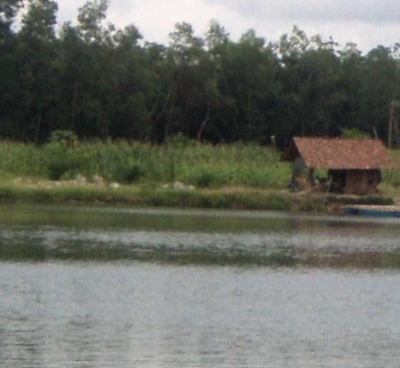 cerpen tentang memancing