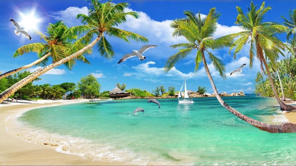 Tranh dán tường cảnh biển 3D đẹp