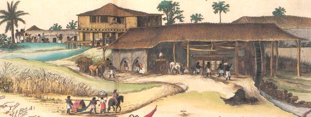 Engenho dá História: Brasil - Economia Colonial 2