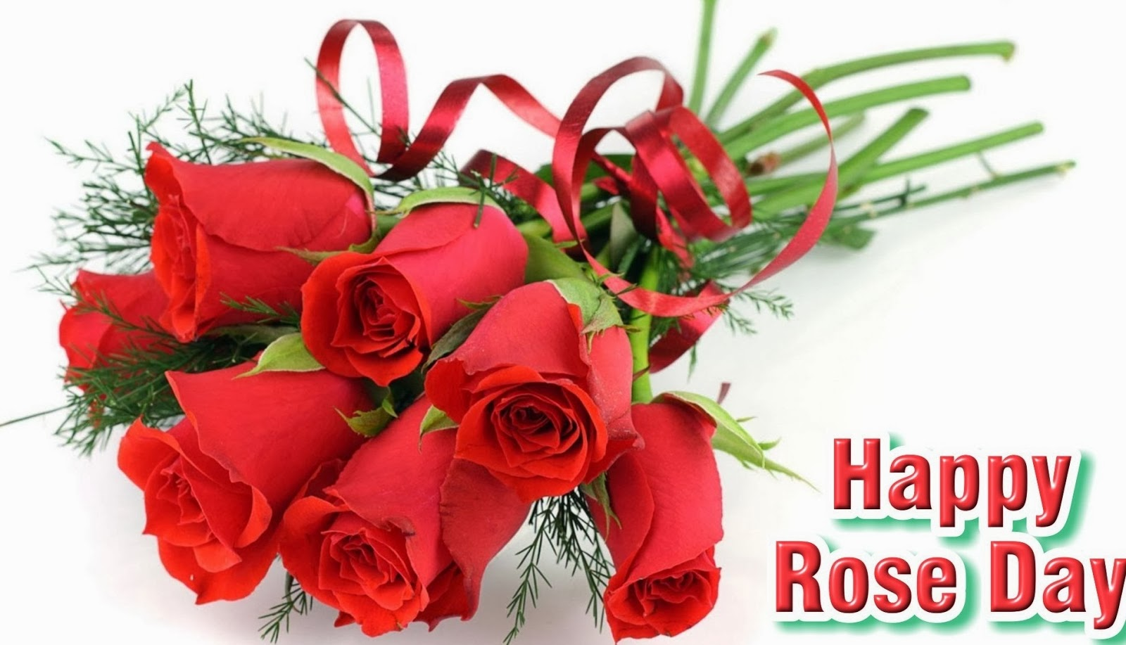 Rose Day 2014 Very Funny Jokes Sms Messages In Hindi For Facebook