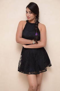 Actress Bhanu Sri Stills in Black Short Dress at Dandu Movie Audio Launch  0006.jpg