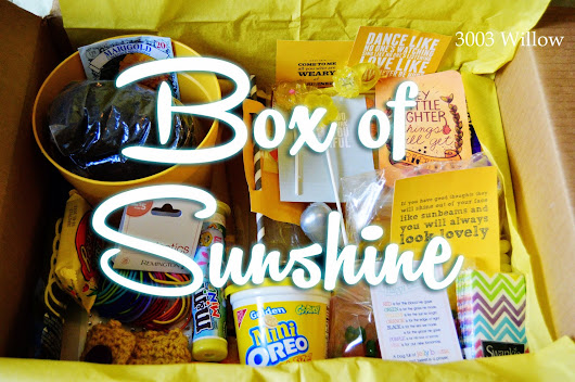 A Box of Sunshine ~ 3003 Willow