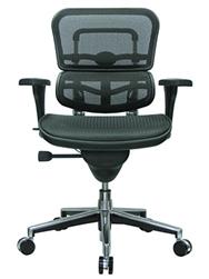 Eurotech Ergohuman Mesh Back Chair