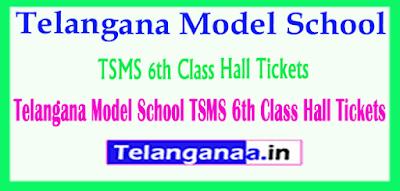 Telangana Model School TSMS 6th Class Hall Tickets
