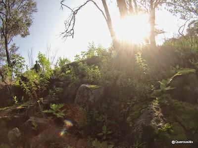 Entrando a la barranca del Arroyo El Mante en la parte alta de Cerro Viejo