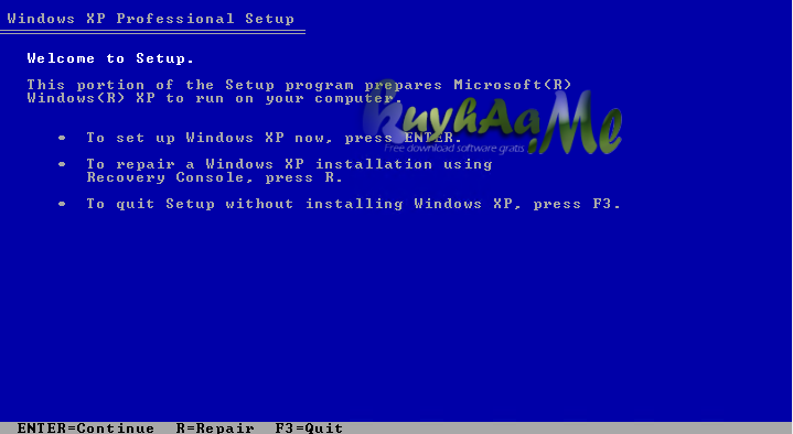 Windows XP Professional SP3