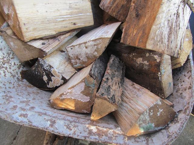 Penészgombás tűzifa
