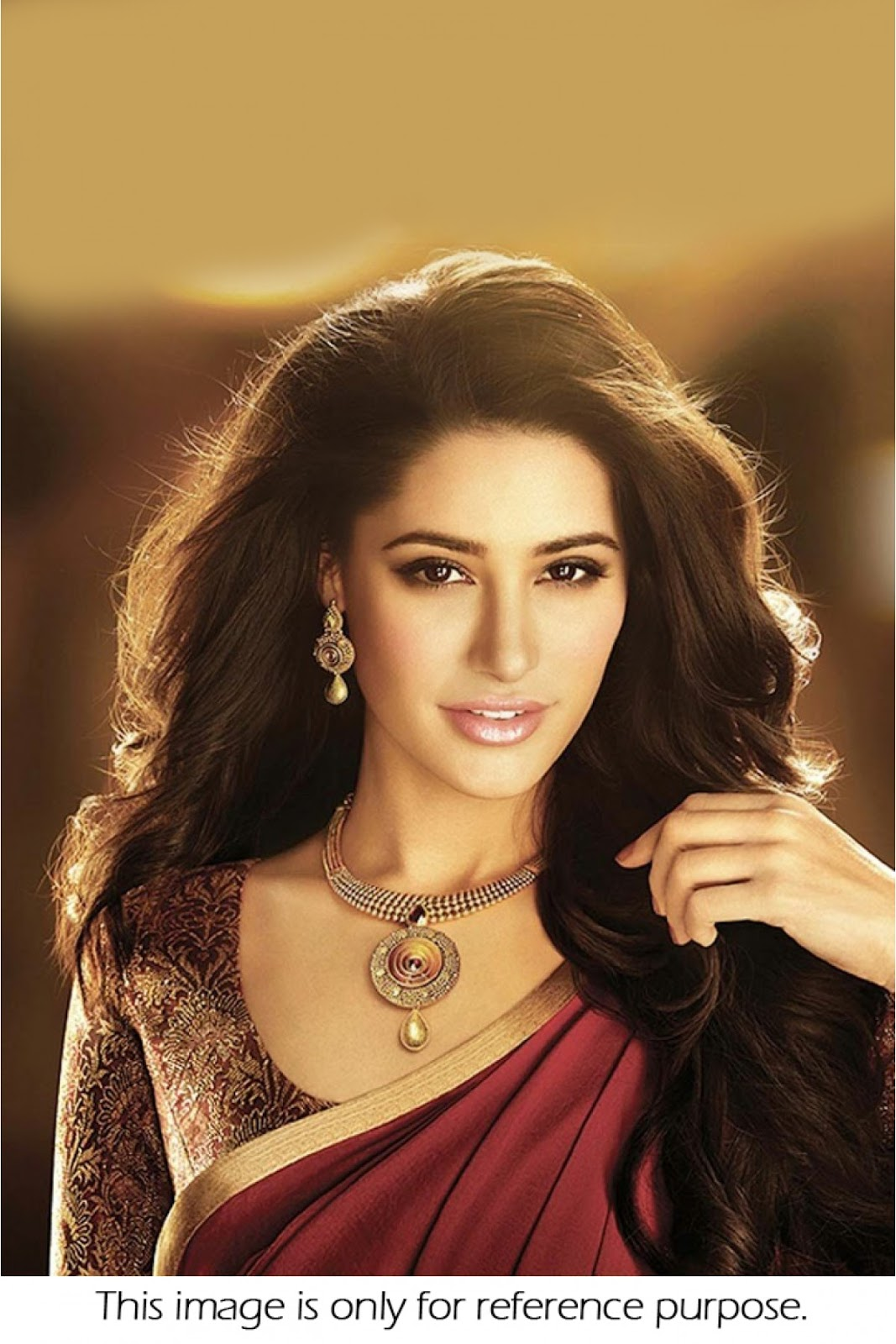 Fliqy Nargis Fakhri In Saree Collection,Hot Collections-8115