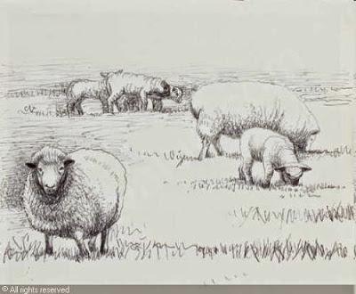 рисунок год овцы