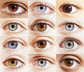 Olhos: janela da calma - Visão e saúde.