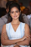 Shanvi Looks super cute in Small Mini Dress at IIFA Utsavam Awards press meet 27th March 2017 66.JPG
