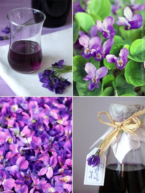sok fiołkowy z kwiatów fiołka