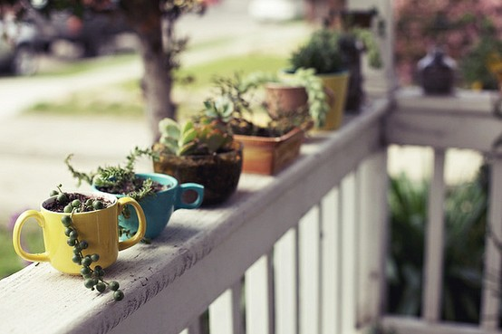 Old teacups and mugs make for perfect mini planters