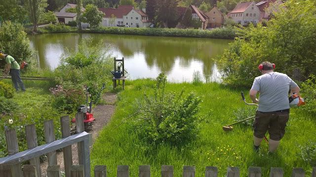 Aus dieser Wiese wird Gartenland (c) by Joachim Wenk
