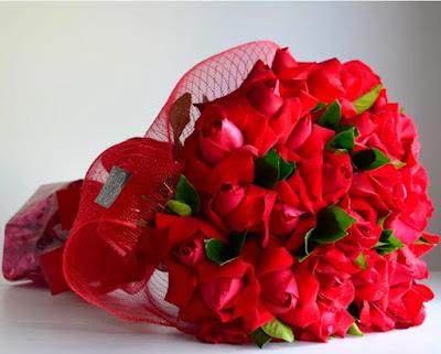 Rosas Colombianas - Buon Giorno Conceito